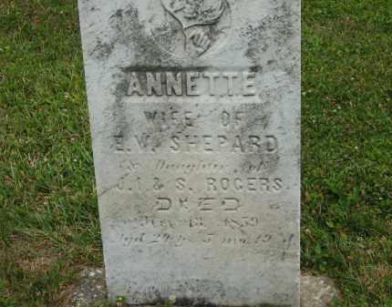 SHEPARD, ANNETTE - Lorain County, Ohio | ANNETTE SHEPARD - Ohio Gravestone Photos