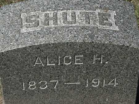 SHUTE, ALICE H. - Lorain County, Ohio | ALICE H. SHUTE - Ohio Gravestone Photos