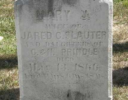 SLAUTER, MARY J. - Lorain County, Ohio | MARY J. SLAUTER - Ohio Gravestone Photos