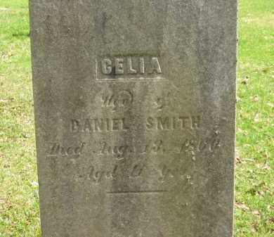 SMITH, CELIA - Lorain County, Ohio | CELIA SMITH - Ohio Gravestone Photos