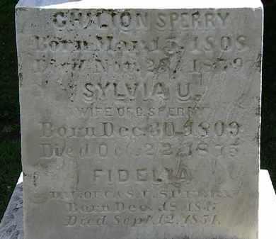SPERRY, FIDELIA - Lorain County, Ohio | FIDELIA SPERRY - Ohio Gravestone Photos