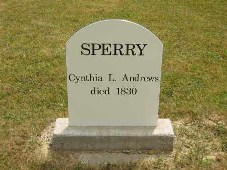 ANDREWS SPERRY, CYNTHIA L. - Lorain County, Ohio   CYNTHIA L. ANDREWS SPERRY - Ohio Gravestone Photos
