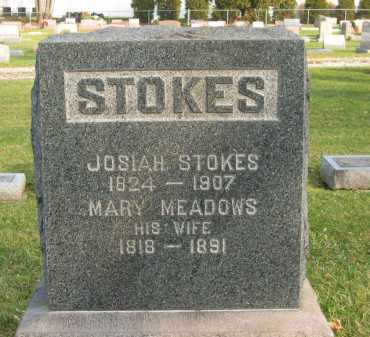 MEADOWS STOKES, MARY - Lorain County, Ohio | MARY MEADOWS STOKES - Ohio Gravestone Photos