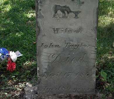 TAYLOR, AMY - Lorain County, Ohio | AMY TAYLOR - Ohio Gravestone Photos