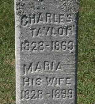 TAYLOR, CHARLIE - Lorain County, Ohio   CHARLIE TAYLOR - Ohio Gravestone Photos