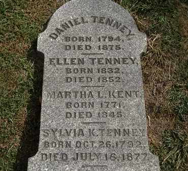 TENNEY, DANIEL - Lorain County, Ohio | DANIEL TENNEY - Ohio Gravestone Photos