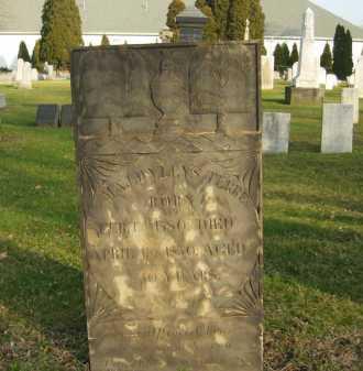 TERREL, MAJ. WYLLYS - Lorain County, Ohio   MAJ. WYLLYS TERREL - Ohio Gravestone Photos