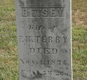 TERRY, BETSEY - Lorain County, Ohio | BETSEY TERRY - Ohio Gravestone Photos