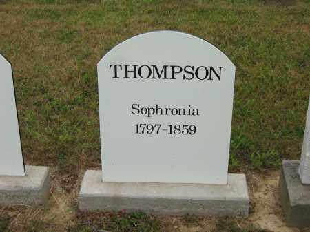 THOMPSON, SOPHRONIA - Lorain County, Ohio | SOPHRONIA THOMPSON - Ohio Gravestone Photos