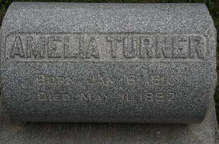 TURNER, AMELIA - Lorain County, Ohio | AMELIA TURNER - Ohio Gravestone Photos