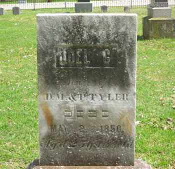 TYLER, P. - Lorain County, Ohio | P. TYLER - Ohio Gravestone Photos