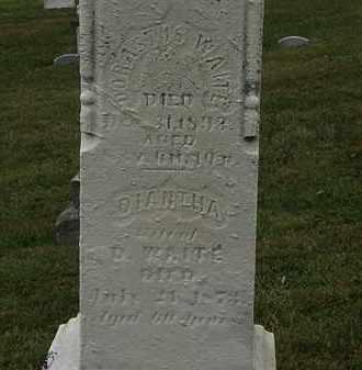 WAITE, DORASTUS - Lorain County, Ohio | DORASTUS WAITE - Ohio Gravestone Photos