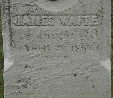 WAITE, JAMES - Lorain County, Ohio | JAMES WAITE - Ohio Gravestone Photos