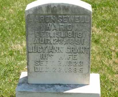 WARD, LUCY ANN - Lorain County, Ohio | LUCY ANN WARD - Ohio Gravestone Photos