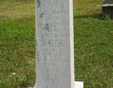 WARD, AURILLA - Lorain County, Ohio | AURILLA WARD - Ohio Gravestone Photos