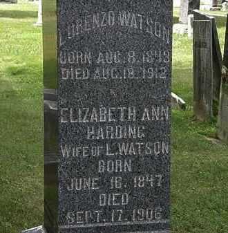 WATSON, LORENZO - Lorain County, Ohio | LORENZO WATSON - Ohio Gravestone Photos