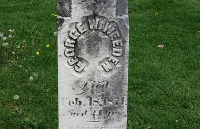 WEEDEN, GEORGE W. - Lorain County, Ohio   GEORGE W. WEEDEN - Ohio Gravestone Photos
