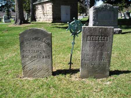 WELLMAN, ABRAHAM - Lorain County, Ohio | ABRAHAM WELLMAN - Ohio Gravestone Photos