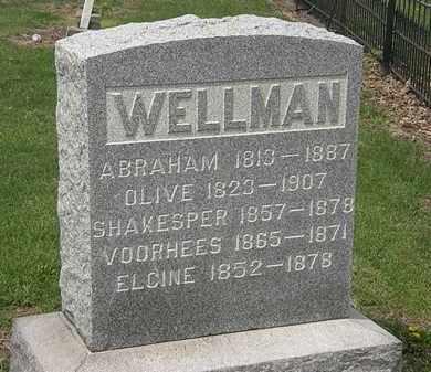 WELLMAN, SHAKESPER - Lorain County, Ohio | SHAKESPER WELLMAN - Ohio Gravestone Photos