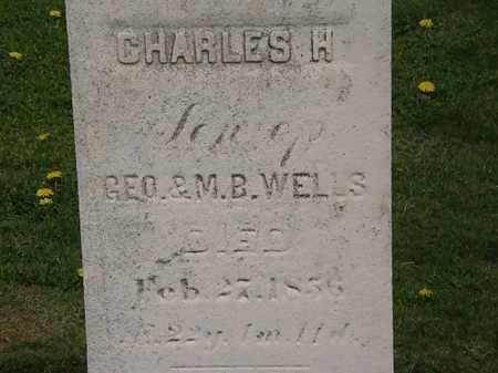 WELLS, GEO. - Lorain County, Ohio | GEO. WELLS - Ohio Gravestone Photos