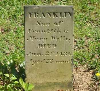 WELLS, FRANKLIN - Lorain County, Ohio | FRANKLIN WELLS - Ohio Gravestone Photos