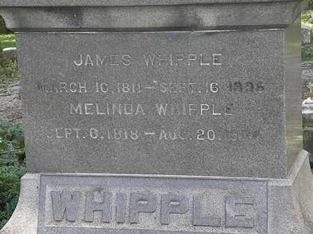 WHIPPLE, JAMES - Lorain County, Ohio   JAMES WHIPPLE - Ohio Gravestone Photos