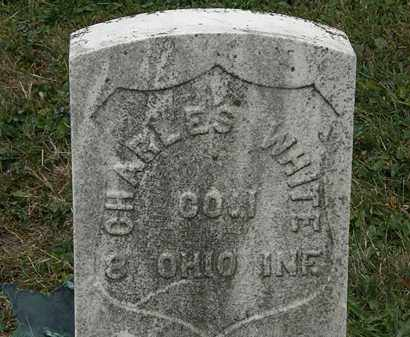 WHITE, CHARLES - Lorain County, Ohio | CHARLES WHITE - Ohio Gravestone Photos
