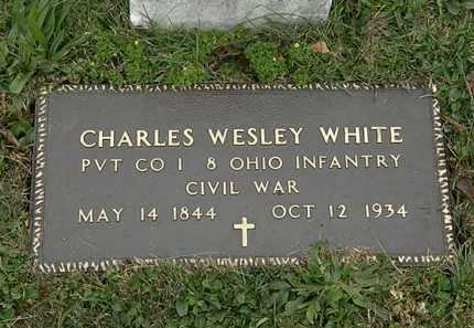 WHITE, CHARLES WESLEY - Lorain County, Ohio | CHARLES WESLEY WHITE - Ohio Gravestone Photos