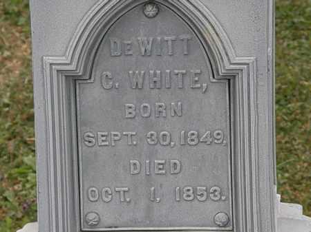 WHITE, DEWITT C. - Lorain County, Ohio | DEWITT C. WHITE - Ohio Gravestone Photos