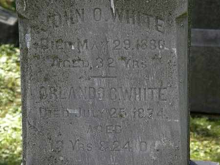 WHITE, JOHN O. - Lorain County, Ohio | JOHN O. WHITE - Ohio Gravestone Photos