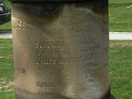 WHITTLESEY, JOHN - Lorain County, Ohio | JOHN WHITTLESEY - Ohio Gravestone Photos