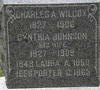JOHNSON WILCOX, CYNTHIA - Lorain County, Ohio | CYNTHIA JOHNSON WILCOX - Ohio Gravestone Photos