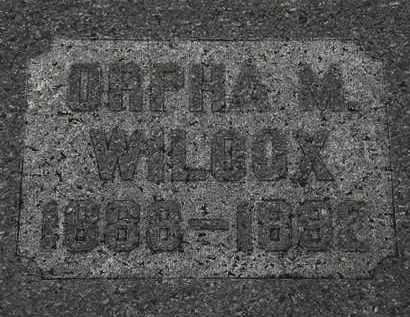 WILCOX, ORPHA M. - Lorain County, Ohio | ORPHA M. WILCOX - Ohio Gravestone Photos