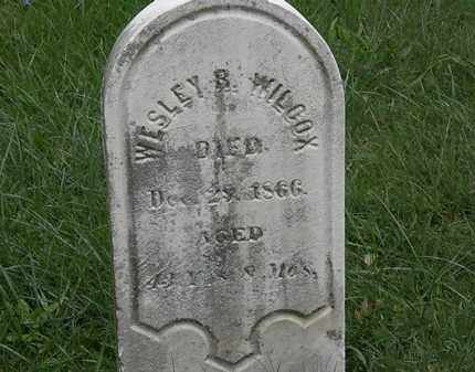 WILCOX, WESLEY B. - Lorain County, Ohio | WESLEY B. WILCOX - Ohio Gravestone Photos