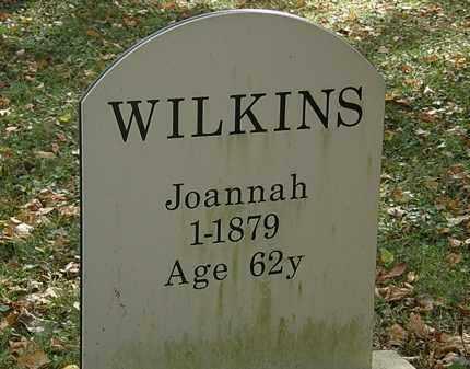 WILKINS, JOANNAH - Lorain County, Ohio | JOANNAH WILKINS - Ohio Gravestone Photos