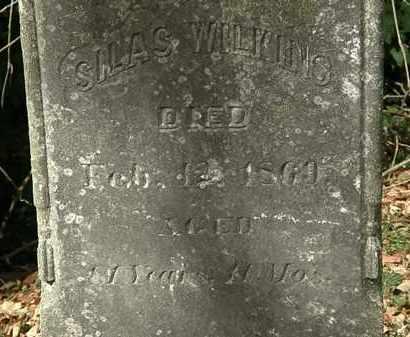 WILKINS, SILAS - Lorain County, Ohio | SILAS WILKINS - Ohio Gravestone Photos