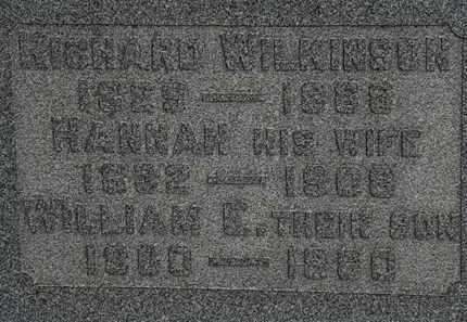 WILKINSON, HANNAH - Lorain County, Ohio | HANNAH WILKINSON - Ohio Gravestone Photos