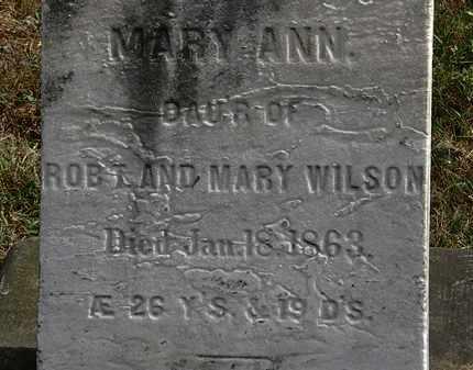 WILSON, MARY - Lorain County, Ohio | MARY WILSON - Ohio Gravestone Photos
