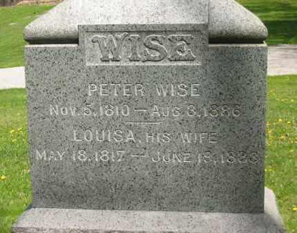 WISE, LOUISA - Lorain County, Ohio   LOUISA WISE - Ohio Gravestone Photos