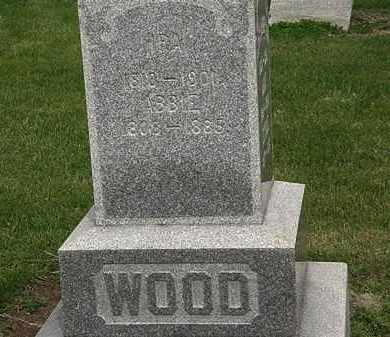 WOOD, ABBIE - Lorain County, Ohio   ABBIE WOOD - Ohio Gravestone Photos