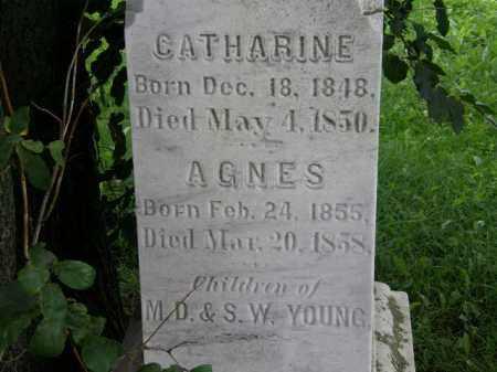 YOUNG, AGNES - Lorain County, Ohio | AGNES YOUNG - Ohio Gravestone Photos