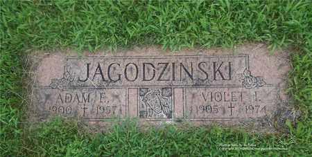 JAGODZINSKI, ADAM E. - Lucas County, Ohio | ADAM E. JAGODZINSKI - Ohio Gravestone Photos