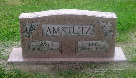 AMSTUTZ, DAVID - Lucas County, Ohio | DAVID AMSTUTZ - Ohio Gravestone Photos