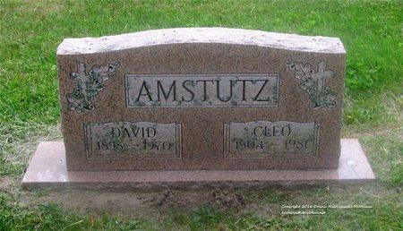 AMSTUTZ, DAVID - Lucas County, Ohio | DAVID AMSTUTZ - Ohio Gravestone Photos
