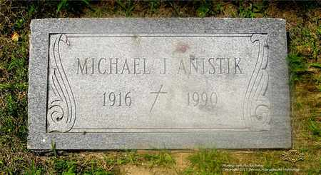 ANISTIK, MICHAEL J. - Lucas County, Ohio | MICHAEL J. ANISTIK - Ohio Gravestone Photos