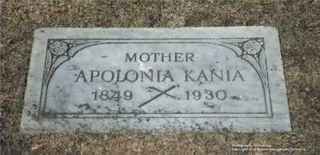 KANIA, APOLONIA - Lucas County, Ohio | APOLONIA KANIA - Ohio Gravestone Photos