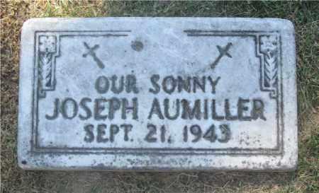 AUMILLER, JOSEPH - Lucas County, Ohio   JOSEPH AUMILLER - Ohio Gravestone Photos