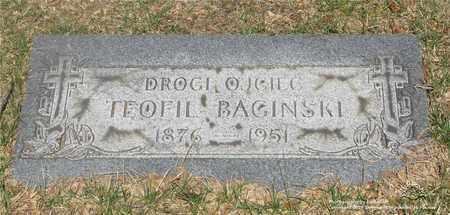 BAGINSKI, TEOFIL - Lucas County, Ohio | TEOFIL BAGINSKI - Ohio Gravestone Photos