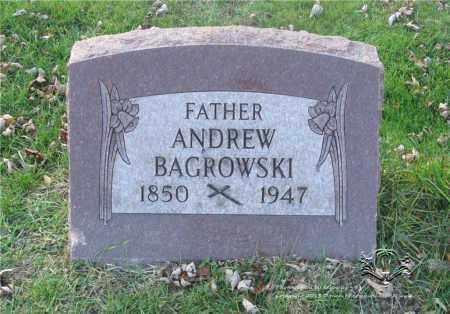 BAGROWSKI, ANDREW - Lucas County, Ohio | ANDREW BAGROWSKI - Ohio Gravestone Photos