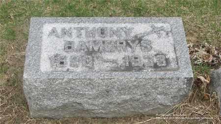 BAMBRYS, ANTHONY - Lucas County, Ohio | ANTHONY BAMBRYS - Ohio Gravestone Photos